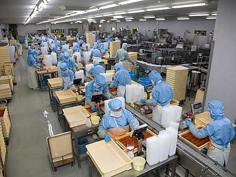 IPホテル福岡が明太子工場見学ツアー付き宿泊プランを販売