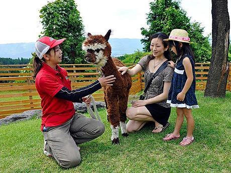 キャナルシティ博多に「阿蘇カドリー・ドミニオン」の動物が来館