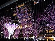 JR博多駅に一足早い「夜桜」 桜色のイルミネーションが点灯