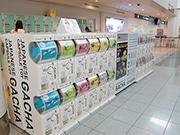 福岡空港国際線に「空港ガチャ」 余った硬貨の利用見込み130種