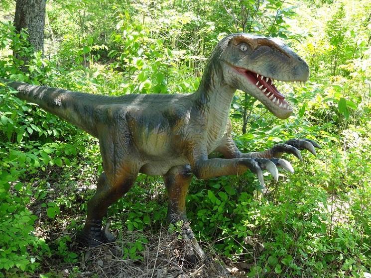 恐竜ロボ「ヴェロキラプトル」