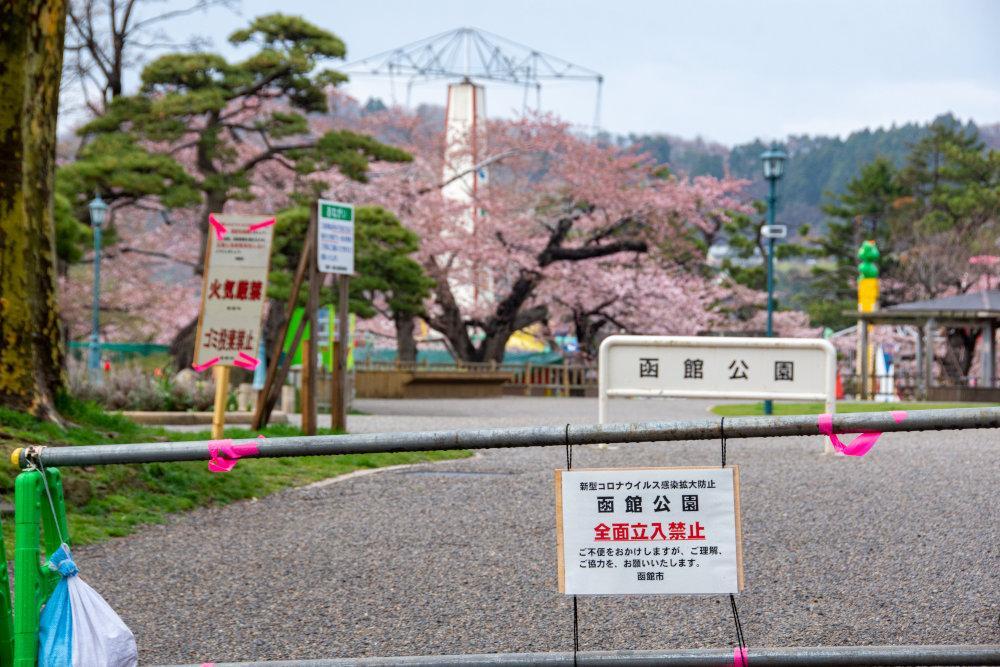 大型連休最終日の5月6日まで全面立ち入り禁止となった函館公園