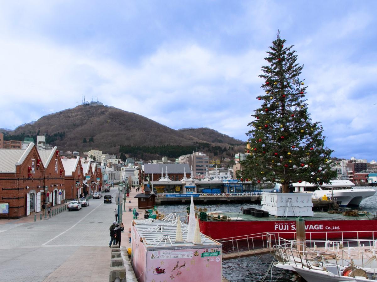 道産のトドマツに約15万球のイルミネーションを施した巨大クリスマスツリーが金森赤レンガ倉庫前に姿を現した