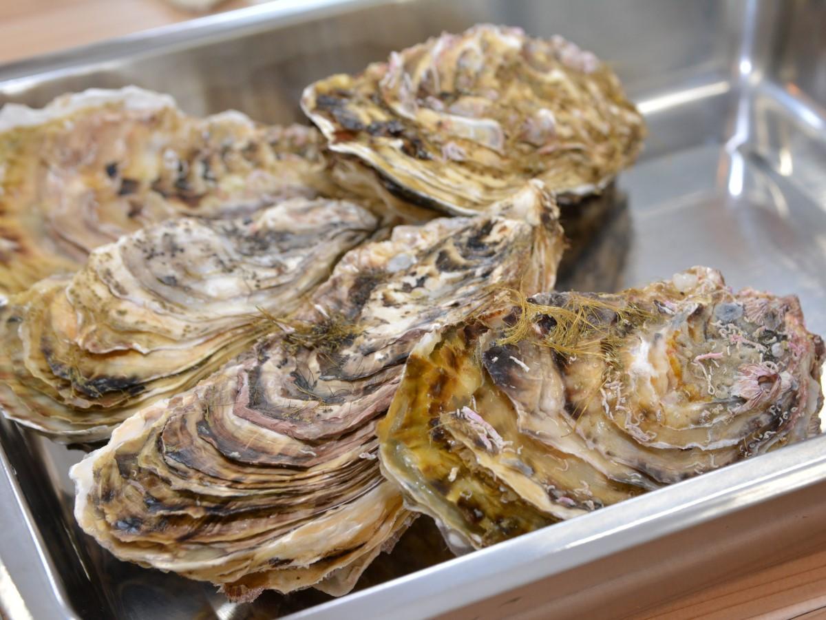 冬に旬を迎えるカキをはじめ、北斗産の貝や米などをドライブスルー形式で販売する