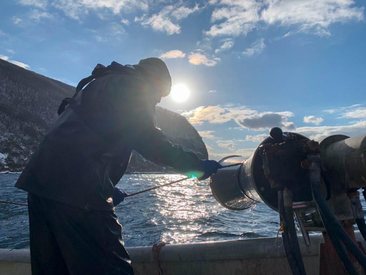 その日の朝に入舟漁港で水揚げした魚介類などを販売する