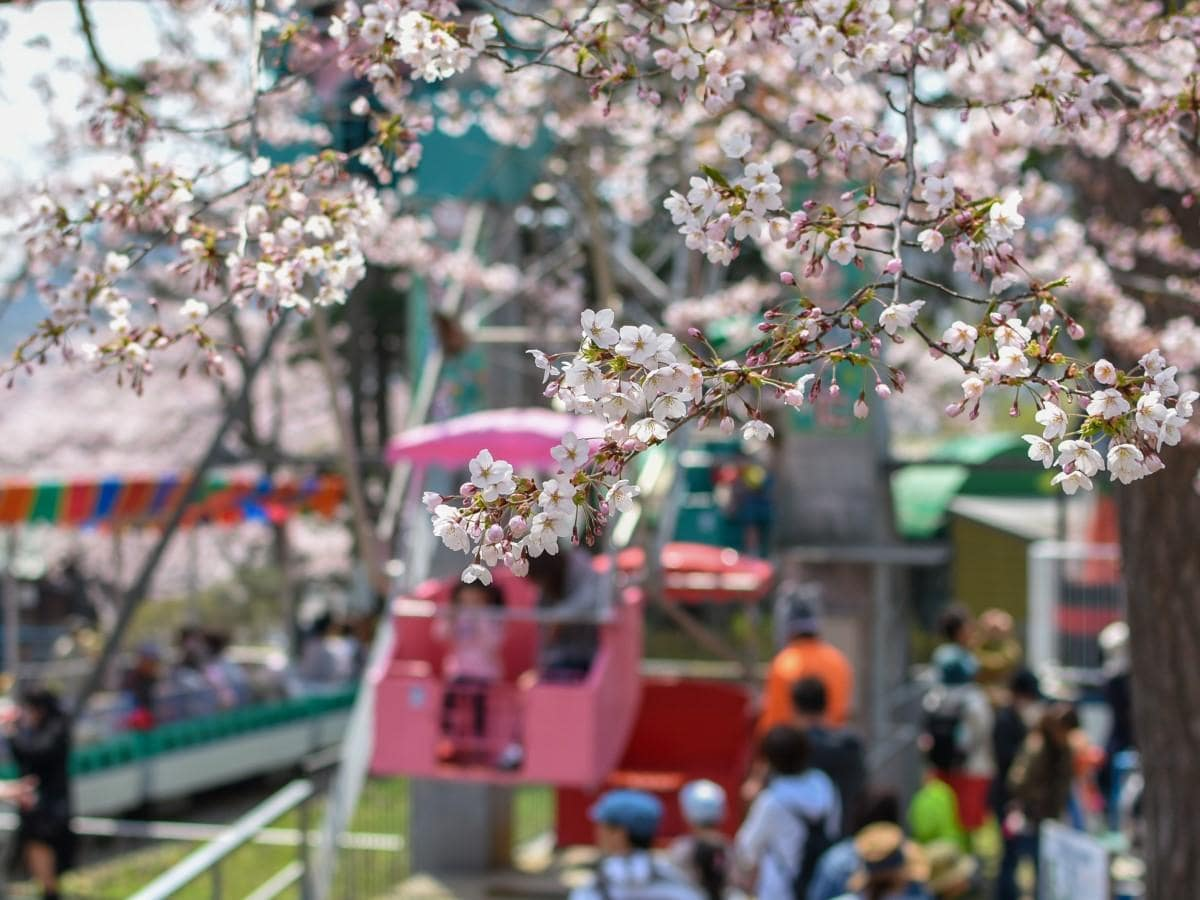 存続の危機にある函館公園の遊園地「こどものくに」がクラウドファンディングを始めた(2019年撮影)