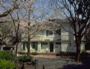 横浜市、14公園の桜の開花状況をwebで提供 -携帯版も