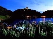 三溪園、ホタル鑑賞会で開園時間延長-三重塔ライトアップも