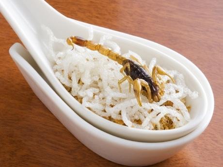 サソリを使ったスタミナメニュー「サソリ揚げ・金沙添え」。約4センチのサソリがれんげで提供される。