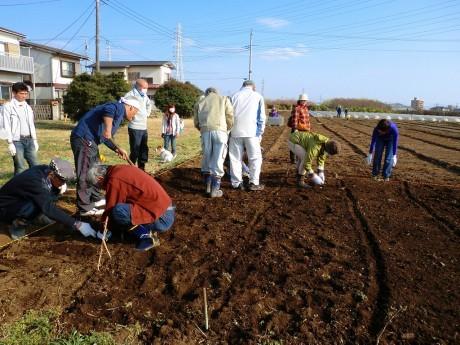 体験農園「COTOMO FARM」の様子