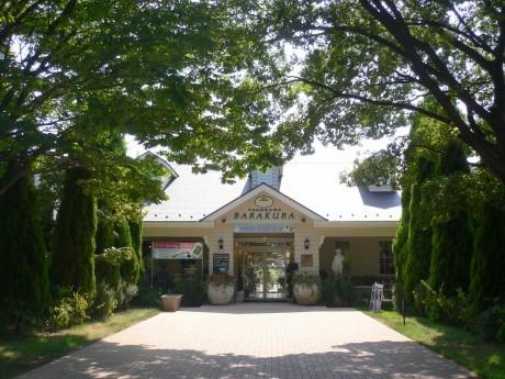 本格的英国式庭園「横浜バラクライングリッシュガーデン」外観