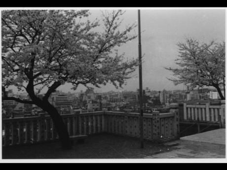 1970年代の「成田山横浜別院」