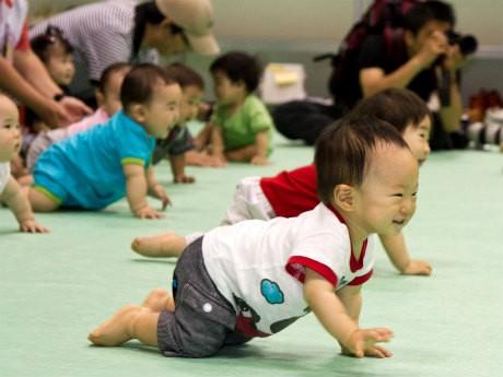 赤ちゃんの「ハイハイレース」も実施