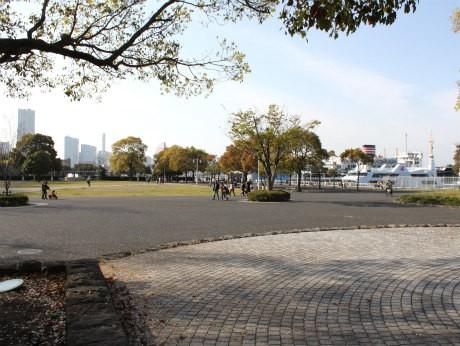 横浜臨海エリアでソーシャルマラソン「よこはまシャルソン」が行われる(写真は山下公園)