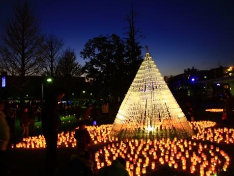 昨年の「光のぷろむなぁど」光のツリーの様子