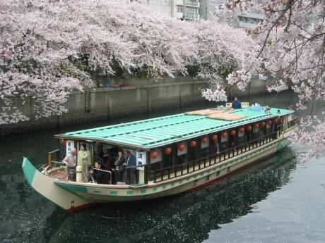 濱進が運航する「屋形船」
