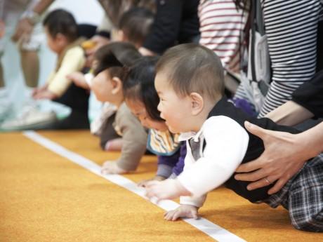 昨年の赤ちゃん「ハイハイ競争」の様子