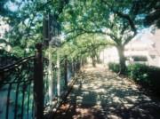 吉田町でピンホールカメラの写真展「街を延う」-写真家・秋山直子さん