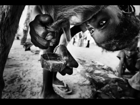 第9回DAYS国際フォトジャーナリズム大賞2位「紛争と干ばつ 飢えるニジェール」(ティム・ディルヴェン)