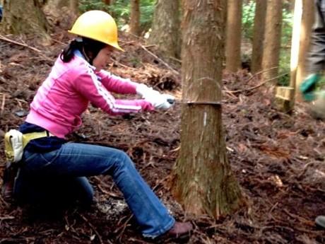横浜の水源かん養林がある山梨県・道志村でも、里山の価値を見直そうと考える市民のボランティア活動が行われている。