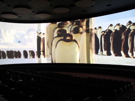 シアター 23.4の上映「ICE WORLDS(氷の世界)」より