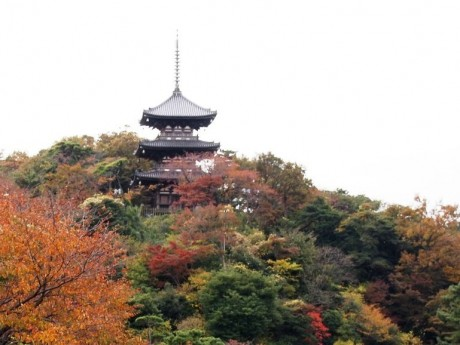 紅葉のなか古建築と散策を楽しめる