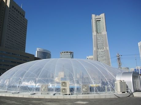 「グランパ横浜農場」外観