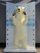 大自然超体感ミュージアム「Orbi」に等身大ホッキョクグマのチョコアート
