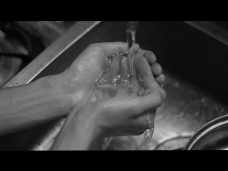 長谷川俊介作品「消失する回路」より