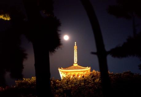 ライトアップされた「旧燈明寺三重塔」