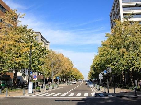 日本大通りも都市デザイン室が景観形成に携わった代表的な事例