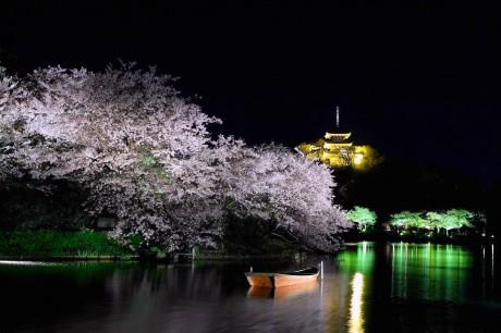 昨年の「観桜の夕べ」の様子