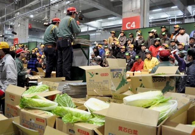 横浜の青果物流通の中心・横浜中央卸売市場