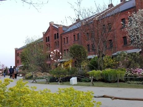 赤レンガ倉庫前に巨大フラワーガーデン「NAKANIwA」 50種類7,500株の草花で自然の里山を演出