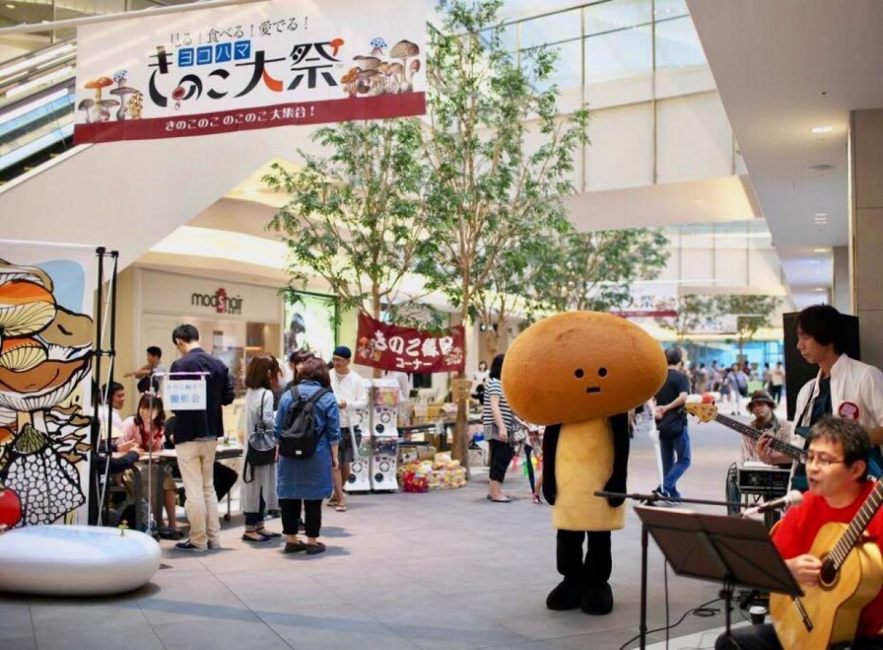 ヨコハマきのこ大祭2016の様子