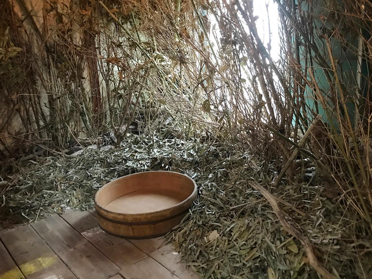 古民家の庭にあった竹や木によるインスタレーション
