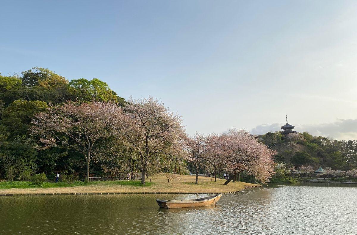 三溪園正門側から見る大池。右奥に見えるのは旧燈明寺三重の塔。