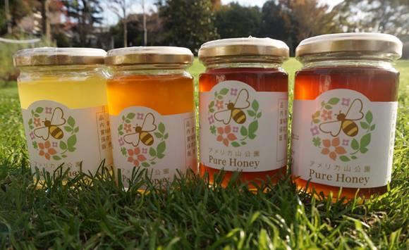 今年の春に採れたフレッシュな「公園産ハチミツ」