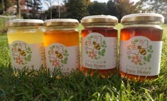 アメリカ山公園で「フラワー&グリーンマーケット」 春採れの公園産蜂蜜販売