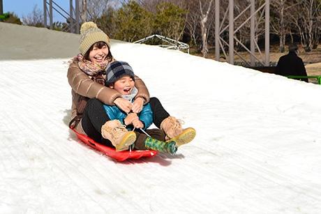 浜名湖ガーデンパークで「雪まつり」 長野から60トンの雪運び会場設営