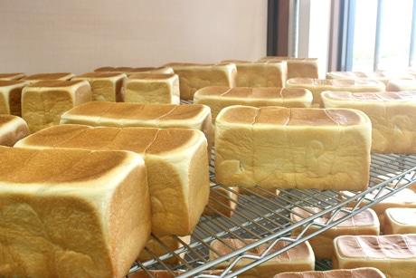 工場に並ぶ「生食パン」