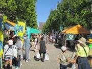 浜松のアクト通りで花と緑のイベント 体験を通じ花と緑の大切さを伝える