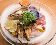 浜松・板屋町にビストロ 仕入れを強化し本格魚介料理を提供