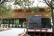 浜松城公園内にスターバックス テラス席中央にはリスの巣ある木も