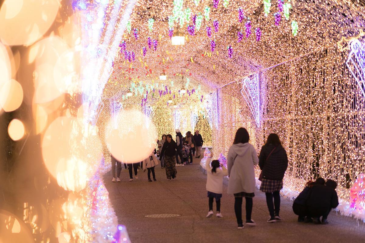 総全長150mの「光のトンネル」