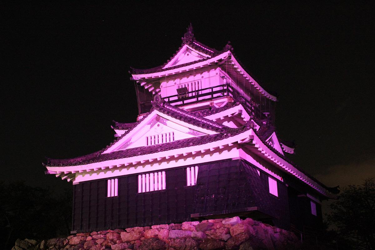 乳がん予防のシンボルカラー、ピンクにライトアップされた浜松城