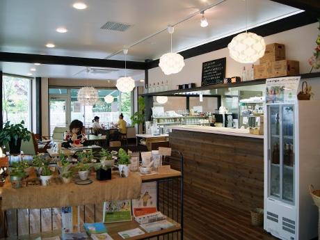 「カフェあじろの樹」店内
