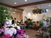 東大阪・石切の生花店「グリーングラス」が移転 植物に特化した庭造りも提案