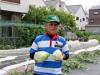 花園の農園で「ラグビーキャベツ」収穫 野菜でラグビーのまちアピール