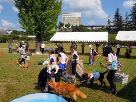 姫路城三の丸広場で開催された愛犬家らの避難訓練「わんちゃんと防災訓練スタンプラリー」の様子